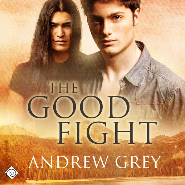The Good Fight Series 1-3 - Andrew Grey